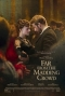 DVD: FAR FROM THE MADDING CROWD (2015)