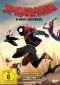 DVD: SPIDER-MAN - A NEW UNIVERSE (2018)